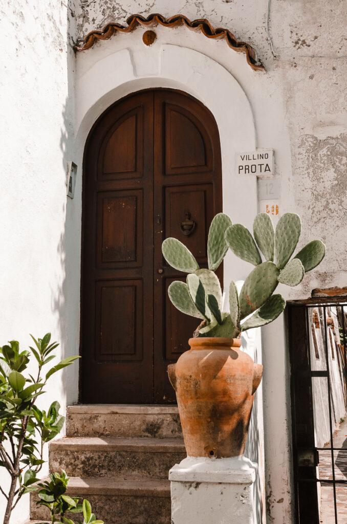 Jolie porte et cactus à Positano Italie